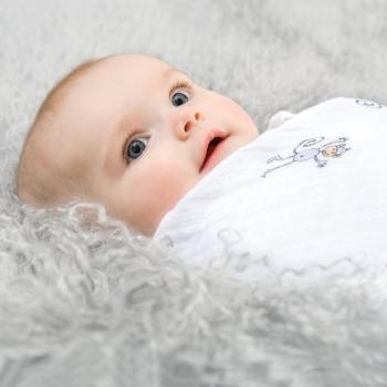 Муслиновые пеленки для новорожденных Aden&Anais, большие, набор 4, Jungle Jam